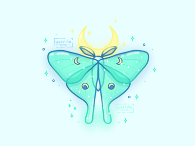 Luna Moth illustration animal moon moth insect luna moth