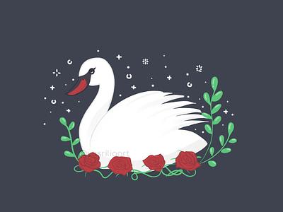 Swan nature animal roses rose fowl bird swan