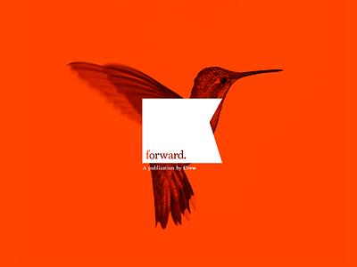 Unused Publication Branding publication hummingbird forward brand bird