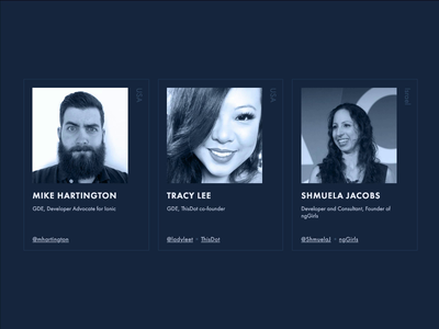 Speaker Highlight section for NgTalks 2019 persons team conference speakers cards hover interaction animation webflow