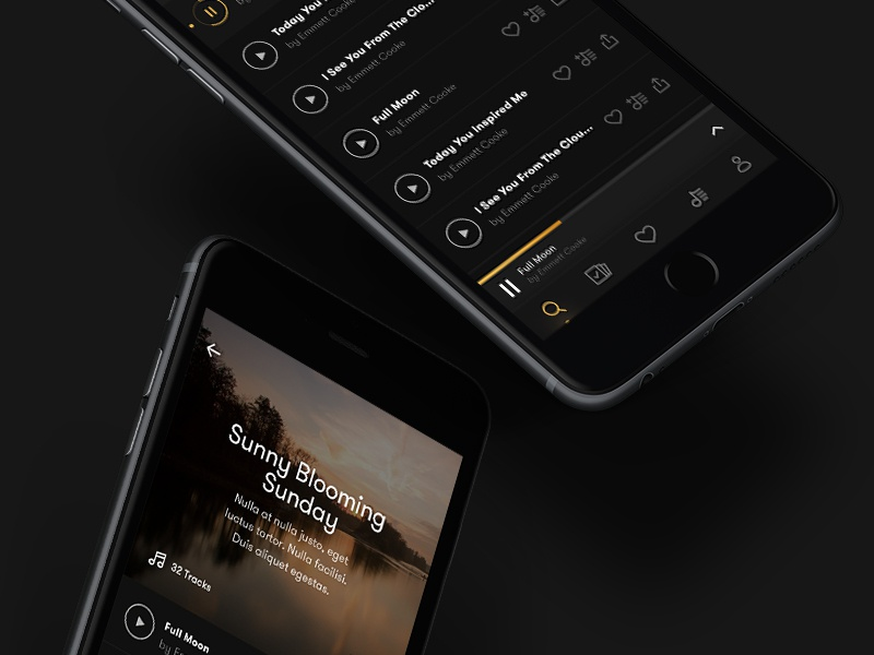 Premium Music App dark theme music player mobile app