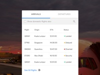 Flight Schedule nepal app flightschedule uxdesign uidesign