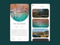 Travel Blog Mobile Concept