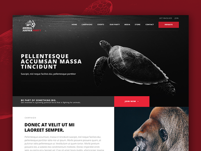 Animal Welfare Non Profit Organization Homepage Design webdesign animal nonprofit homepage
