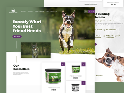 Pet Supplements Homepage dog pet care health landing page webdesign homepage