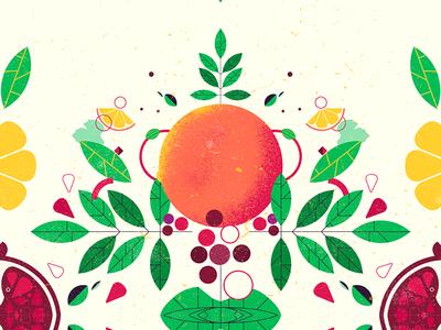 more fruits leaves leaf kaleidoscope pomegranate grape orange styleframe fruits