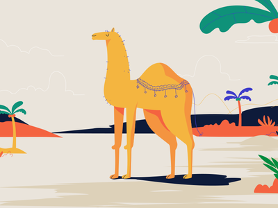 Camel in Morocco plant legs zoo design animal dessert morocco palm tree character illustration camel