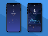 Surfing Conditions -  App Concept