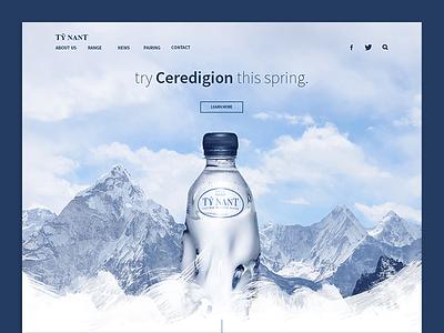 Tŷ Nant Landing Page Redesign ux clean minimalist daily ui website landing