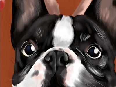 French bulldog digital frenchie illustration bulldog french