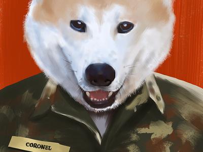 Coronel Fun orange photoshop brush digital akita dog illustration