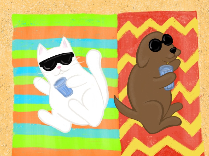 Stay Hydrated Friends illustration beach hydration month awareness rescue cat dog pets