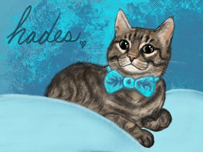Pet Portrait pet portrait digital painting digital art pets cats procreate illustration
