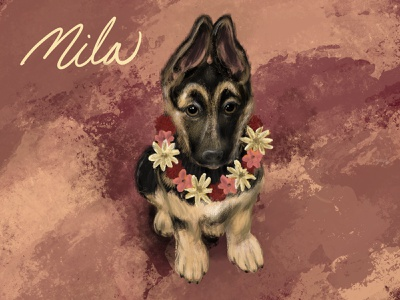 Mila flowers puppies puppy german shepherd pets illustrator dog procreate illustration