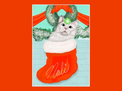 Nali in a Stocking cats bow wreath holiday christmas stocking cat pets procreate illustrator illustration