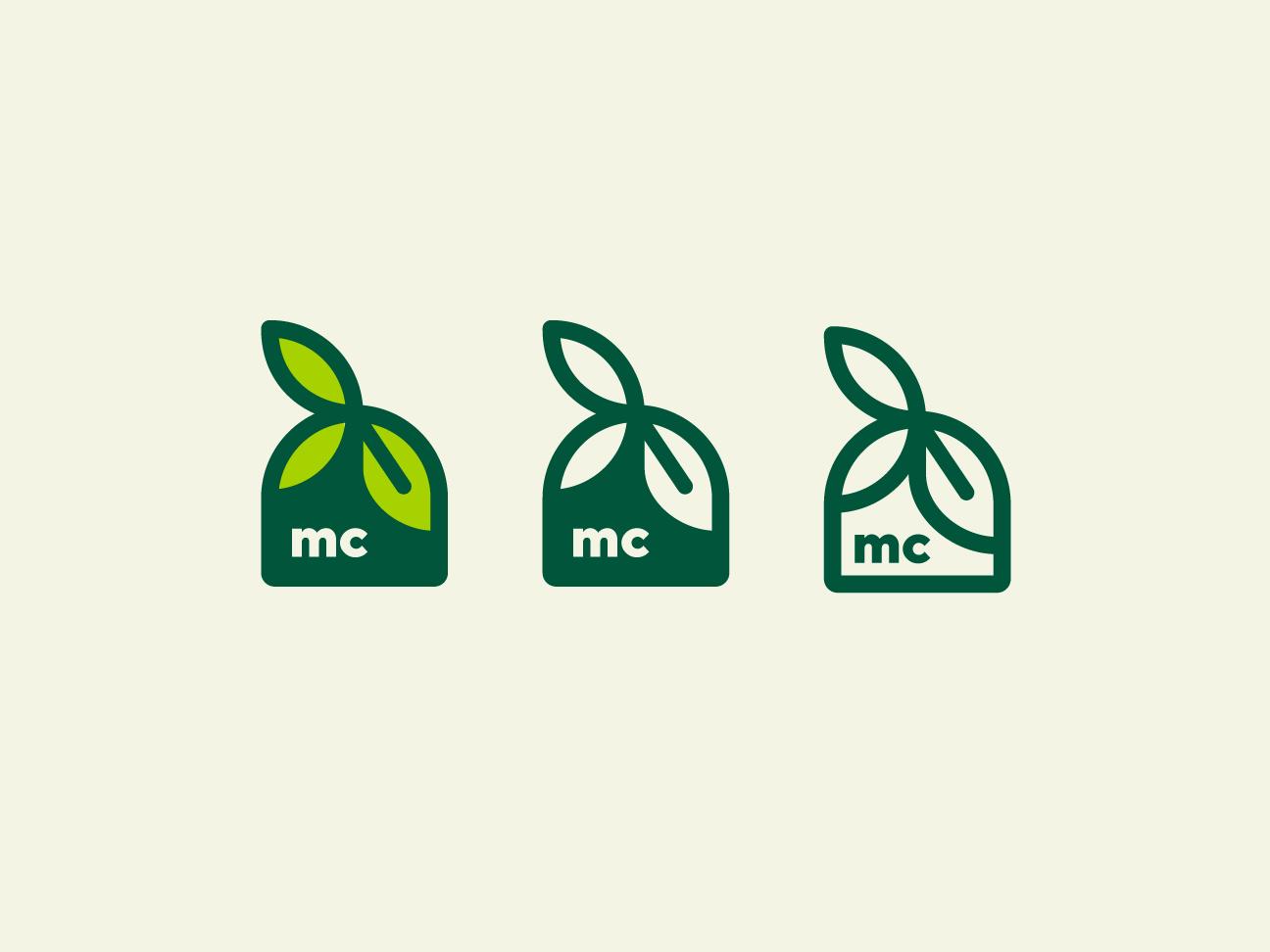 Test 3 - Logotype leaf logo health natural leafs leaf illustration vector brand logo design logotype logo