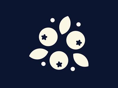 Blueberries illustraion vectors vector fruits branding fruity fruit illustration blueberries fruit design