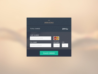 Credit Card checkout checkout creditcard whitespace dailyui