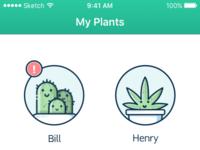 Myplants 1d