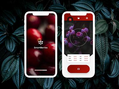 Mobile application design ui ux berries fruit web logo app mobile application