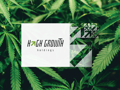 High Growth Holdings