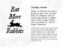 On the Rocks Rabbitry Type Treatment