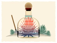 Tequila and agave illustration