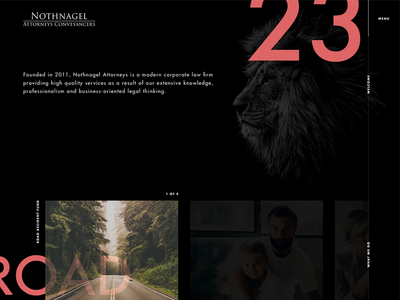 Nothnagel Attorneys landing page website lion black law firm legal law