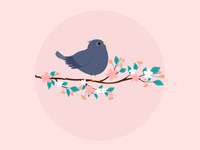 bird illustrator