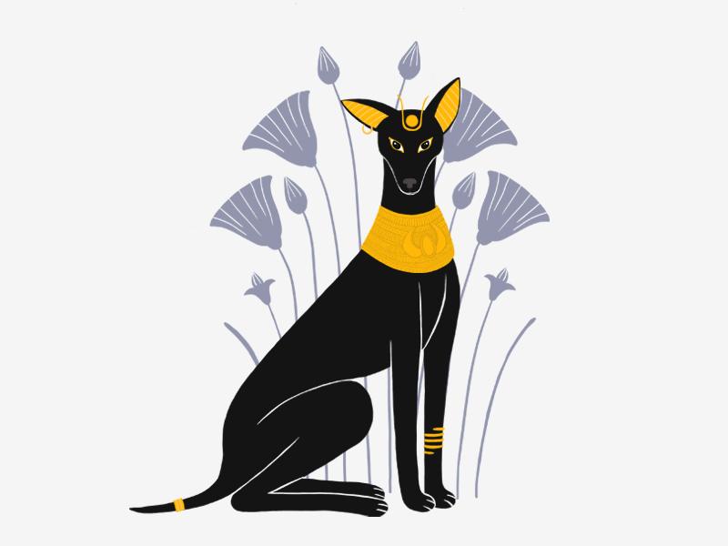 Animal Gods Of Egypt Anubis By Meital Shushan On Dribbble
