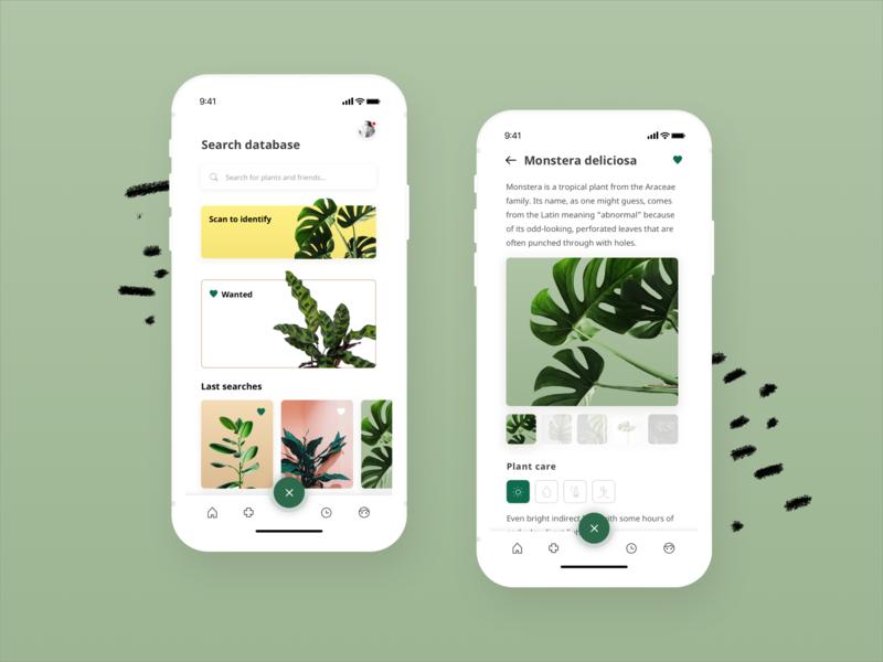 Planty - an urban jungle application for greenthumbs pastel organic garden plants mobile app ux ui