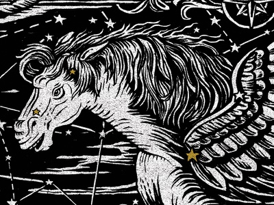 Pegasus noom ucf pegasus illustration constellation