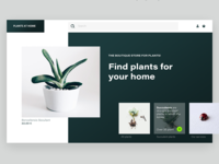 Plants At Home   Concept Of Website Store