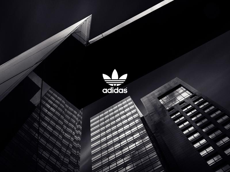 Adidas 2 color colour sneaker architecture adidas graphic
