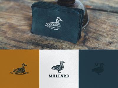 Mallard Logo vector design monoline clean blue copper illustration logo mallard