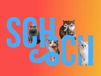 Hull's School Brand Identity - cats of Zurich