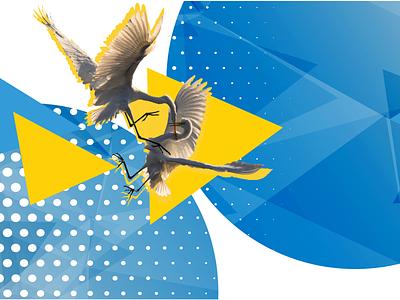 Promote Ukraine Identity yellow blue ukraïna ukraine birds fighting fight birds ngo brussels munich identity design brand design graphic design illustration identity promote ukraine saint digital