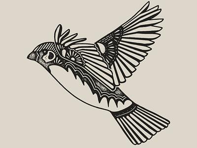 Sparrows texture wings bird illustration sparrow birds bird illustration
