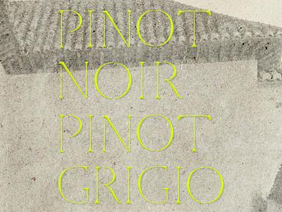 Pinot Typeface stone neon roman serif custom typography custom typeface
