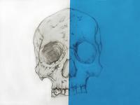 Skull - Pencil