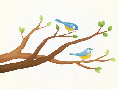 Birds birds illustration cute