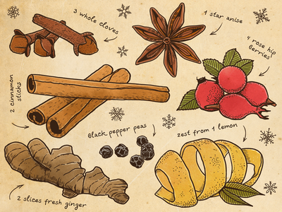 Hot Mulled Wine mulled wine drink spices illustration tdac recipe