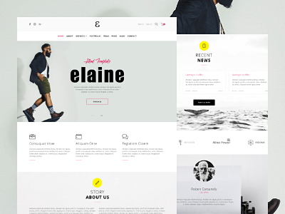 Elaine - WordPress Template services shop blog article about us landing page template wordpress