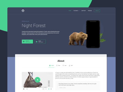 Night Forest sketch xd brand style sheet specific document guide manual style guides