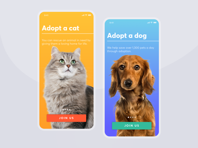 Homeless Animal Shelter Concept concept blue and yellow mobile app mobile app ux design ui design design ux ui minimal clear