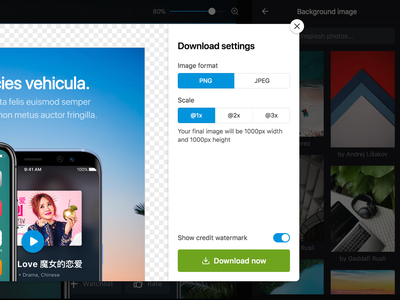 Download preview web app website ui settings image download preview modal
