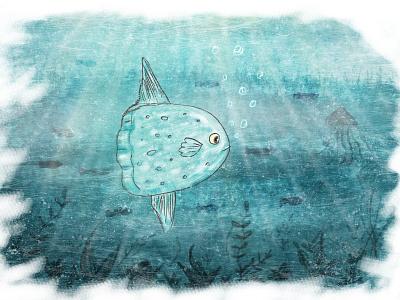 Sunfish blue water paint illustration photoshop sunfish