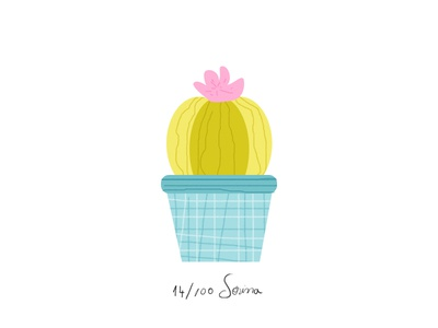 Cactus cacti plant illustration nature pattern pink green cactus 100dayproject