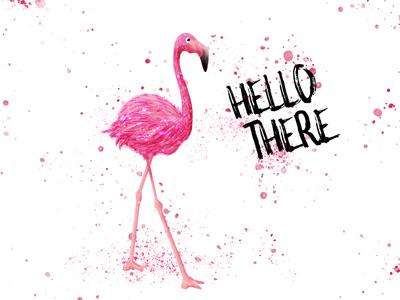 Pink Flamingo painting splash illustration design bird pink flamingo