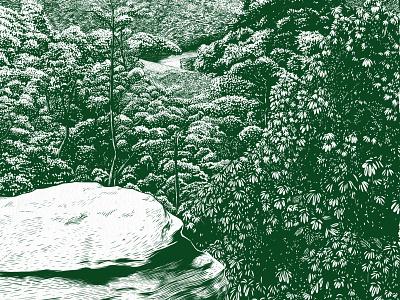 Pinnacles of Berea trees overlook hiking forest engraving woodcut digital illustration